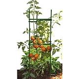 Gardener's Blue Ribbon STEZ1 Stake-It-Easy Plant-Staking System