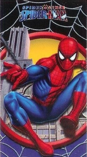 Boy's Spiderman Beach Towel-28Wx58L