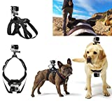 Willtoo(TM) Hound Dog Fetch Harness Chest Strap Belt Mount For GoPro Hero 4 3+ 3 2