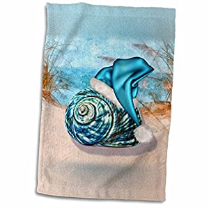 51QeF3GrqnL._SS300_ 50+ Beach Hand Towels and Nautical Hand Towels