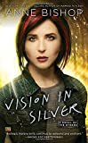 Vision In Silver: A Novel of the Others