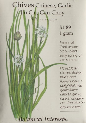 Garlic Chives SeedsB0006BHJ1Q