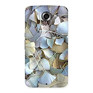 Beauty Leaves Back Case Cover for Nexsus 6