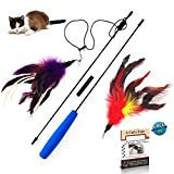 Pet Fit For Life 2 Feather Teaser and Exerciser For Cat and Kitten - Cat Toy Interactive Cat Wand