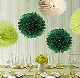 KISKIS dreampark カラフル フラワーポンポン ペーパーフラワー キット ウエディング 結婚式 パーティー 3色 合計10個セット (緑色3個 黄緑3個 白色4個, 25cm)KK135