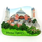 Souvenir Blue Mosque Sultanahmet Cami Istanbul Turkey 3D High Quality Magnet Free Shipping