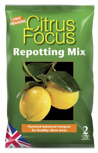 mezcla-de-trasplante-citrus-focus-de-2-litros