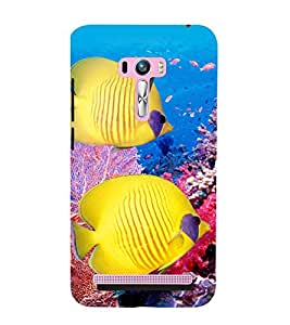 printtech Coral Sea Fish Back Case Cover for Asus Zenfone 6::Asus Zenfone 6 A600CG