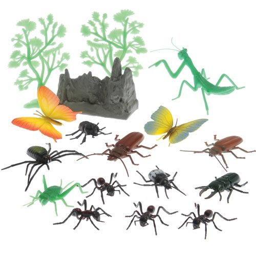 Insect and Landscape 17 Piece Set