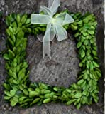 Flora Decor Preserved Boxwood Square Wreath 8""