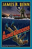 img - for A Blind Goddess (A Billy Boyle WWII Mystery) book / textbook / text book