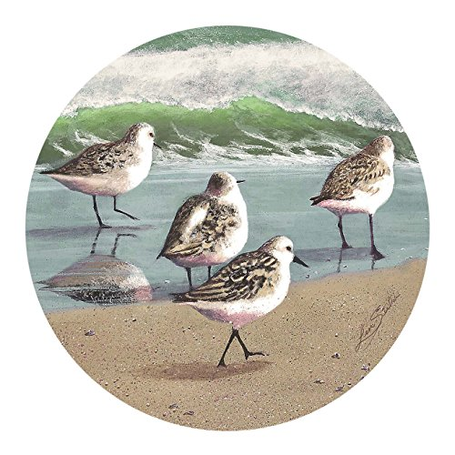 Thirstystone Drink Coaster Set, Sandpiper Parade