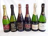 セレクション豪華福袋ワインセット ドンペリの勝った噂のロジャー グラート +世界のスパークリングワイン飲み比べ5本セット(スペイン1本 フランス3本 イタリア2本)泡ワイン6本セット