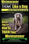 Weimaraner, Weimaraner Training AAA A...
