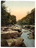13cm x 18cm (1890 - 1900) Vintage Photochrom Postcard Reprint of The Bolton Woods, The Strid, Bolton Abbey, Wharfedale, North Yorkshire, England