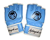 Blue MMA Gloves