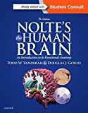 img - for Nolte's The Human Brain: An Introduction to its Functional Anatomy, 7e by Todd Vanderah PhD (2015-06-01) book / textbook / text book