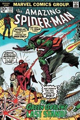 Spider-Man Goblin's Last Stand Comic Book Superhero Poster 24 x 36 inches