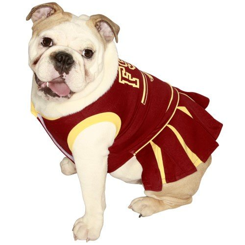 NCAA Florida State Seminoles Cheerleader Dog Outfit,18-30lbs