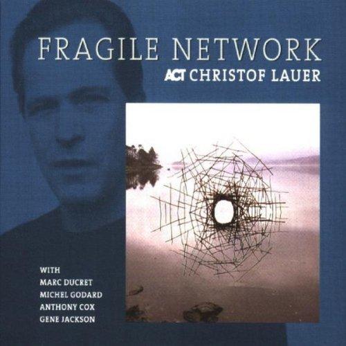 fragile-network