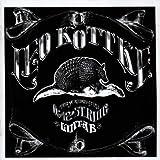 Leo Kottke 6 &12 String Guitar