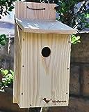 夏休み工作、体験学習、PTA活動に最適!野鳥用巣箱 バードハウスBタイプ 組み立てキット(組立説明書つき)YS400K