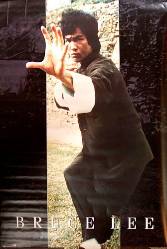 Bruce Lee Master of Martial Arts 24x36 Poster