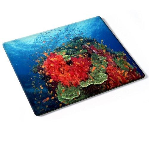 vida-marina-10016-designer-almohadilla-del-raton-mouse-mouse-pad-con-diseno-colorido-autentica-alfom