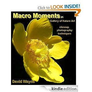 Macro Moments V1