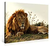 Large Canvas Print Wall Art - MAJESTIC LION - 40x30 Inch Animal Canvas Picture Stretched On A Wooden Frame - Giclee Canvas Printing - Hanging Wall Deco Picture / e3610