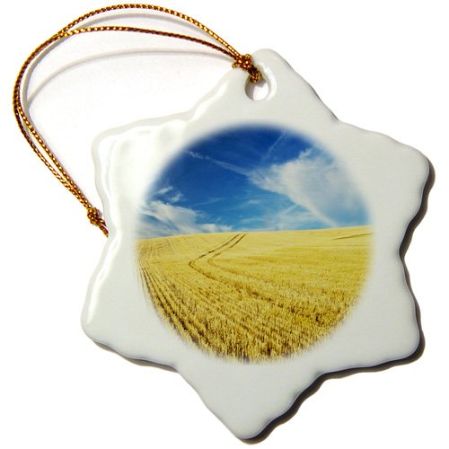 orn_148727_1 Danita Delimont - Farms - Farm Fields, Harvest Wheat, Palouse, Washington, USA - US48 TEG0425 - Terry Eggers - Ornaments - 3 inch Snowflake Porcelain Ornament