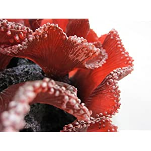 Reef Scene Deco Art Aquarium Artificial Coral Ornaments SH330M red