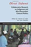 img - for Otros Saberes: Collaborative Research on Indigenous and Afro-Descendant Cultural Politics (Global Indigenous Politics) book / textbook / text book