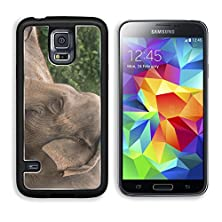 buy Msd Samsung Galaxy S5 Aluminum Plate Bumper Snap Case Mature Asian Elephant Many Years Endangered Species Larged Living Land Animals Image 25944839