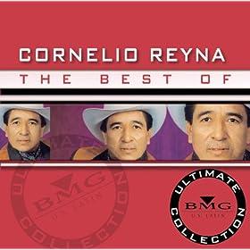 Amazon.com: No Me Acuerdo: Cornelio Reyna: MP3 Downloads