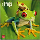 Frogs 2014 Wall