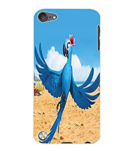 ColourCraft Lovely Parrot Design Back Case Cover for APPLE IPOD TOUCH 5