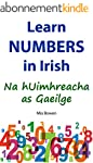Learn Numbers in Irish: Na hUimhreach...