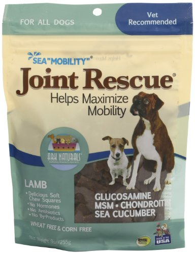 Ark Naturals Sea Mobility Lamb Jerky for Dogs, 9-Ounce Pouches (Pack of 2)