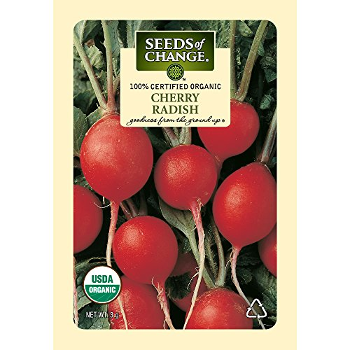 Seeds-of-Change-Certified-Organic-Radish