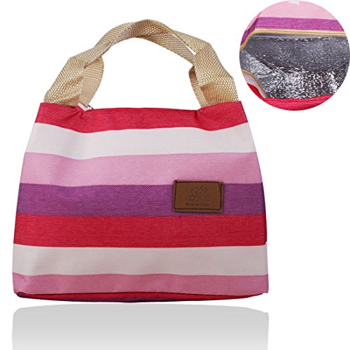 Wis-Done(TM) XB02 Insulated Lunch Bag Small Grocery Food Handbag Zipper Ice Tote for Men Women Kids (Pink) (Free Books Wis compare prices)