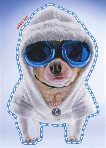 Cool-Chihuahua-In-Goggles-Robe-Sticker-Card-Avanti-Peel-and-Stick-Dog-Birthday-Card