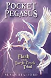 img - for Pocket Pegasus book / textbook / text book