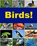 A serious study of birds by Hans Friedrich Gadow, famous for his work in the classification of vertebrates.