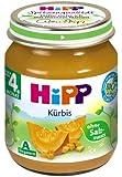 Hipp Kürbis, 6er Pack (6 x 125 g) - Bio