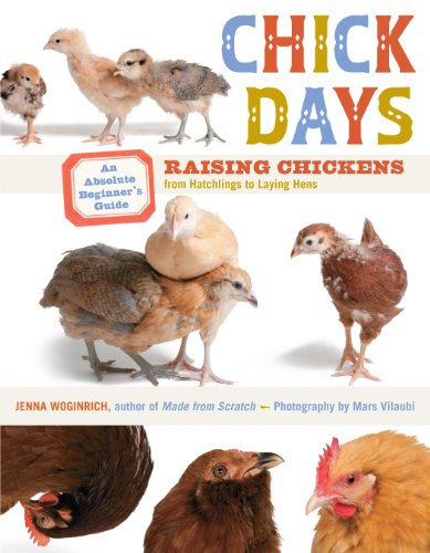 Download Chick Days: An Absolute Beginner's Guide to Raising Chickens from Hatching to Laying