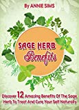 Sage Herb Benefits: Discover 12 Amazing Benefits Of The Sage Herb To Treat And Cure  Your Self Naturally