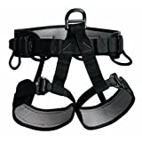 Petzl Pro Falcon Work Positioning Harness