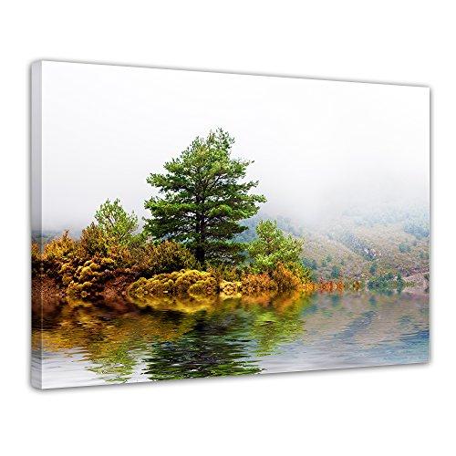 """Bilderdepot24 Leinwandbild """"Pinienbaum"""" - 70x50 cm 1 teilig - fertig gerahmt, direkt vom Hersteller"""
