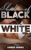Shades of Black and White Vol I: (A Collection of Three Interracial Stories)